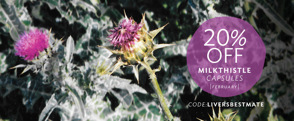 Milkthistle capsules sale