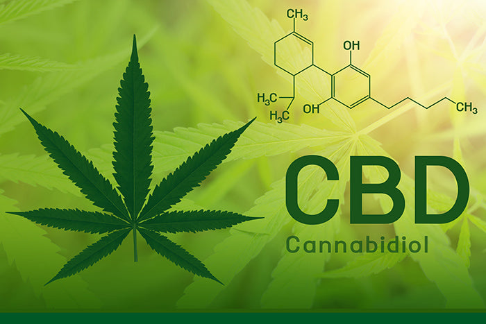 The new buzz word: CBD.
