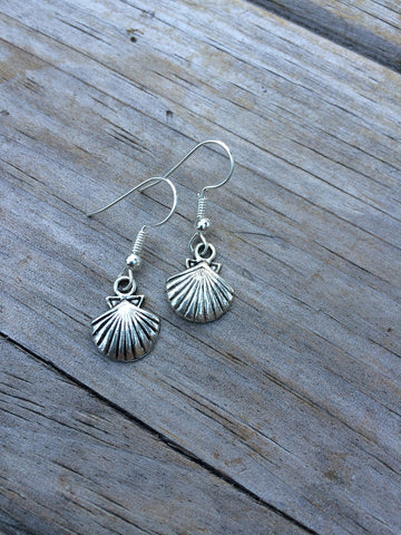 Tiny Seashell Earrings