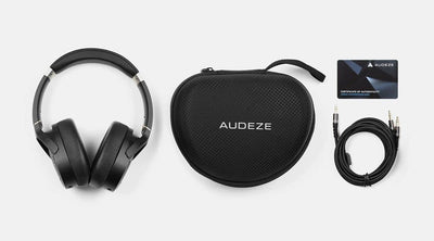 Audeze lcd1 carry case, cable