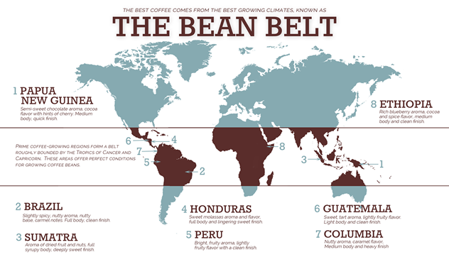 The Bean Belt