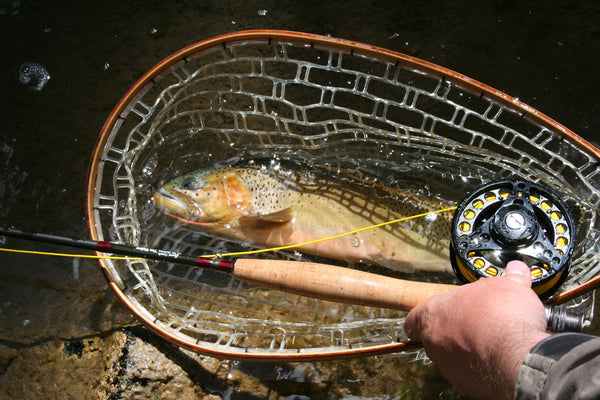 Your expensive rod won't help you catch fish