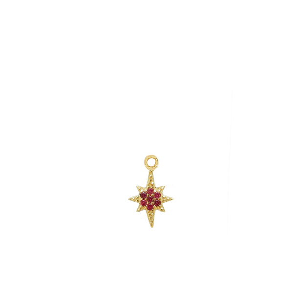 January Star Charm - gold