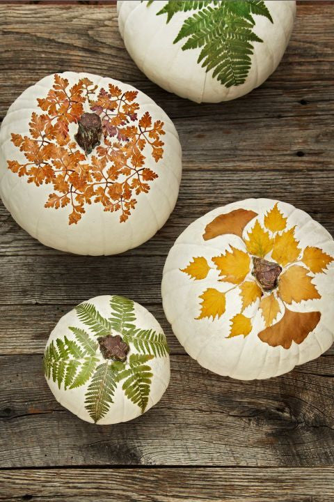 10 Easy Fall Decorating Tips and Ideas