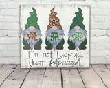 St. Patricks Day Gnome Wood Sign