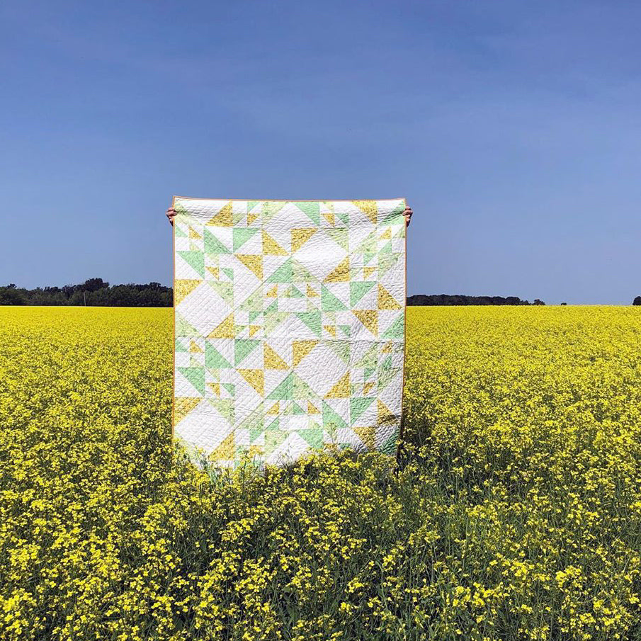 Birds Hill - Open Road Quilt Kit