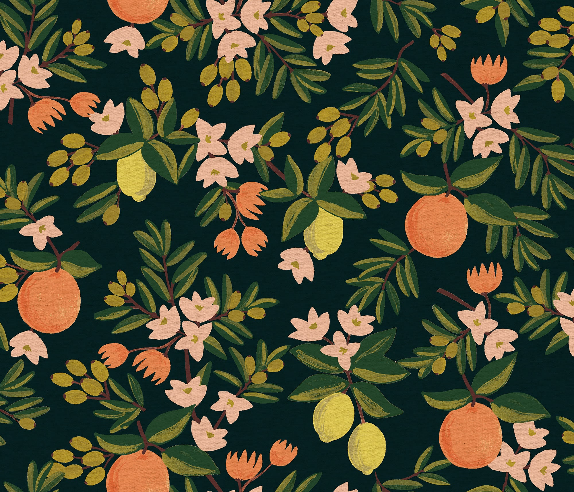 Primavera - Citrus Floral Black | Canvas