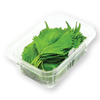 Green Shiso Box