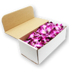Orchids Purple White Box