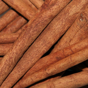 "Cinnamon 2 3/4"" Sticks Organic Premium"