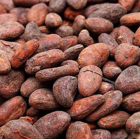 Cocoa Beans, Whole, Raw, Organic