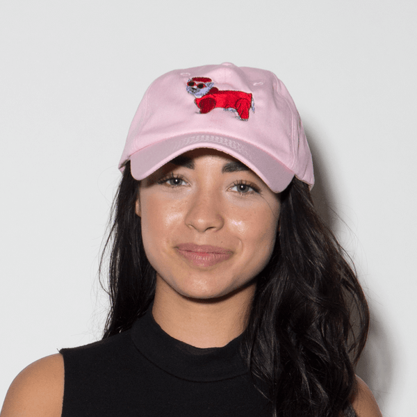 Cool Dog Dad Hat - Pink - Chill Hat