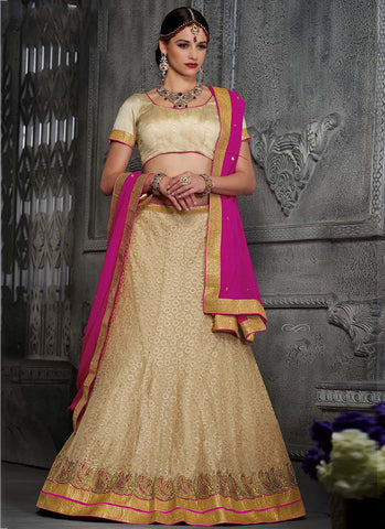 Beige Net Embroidered Wedding Lehenga Choli