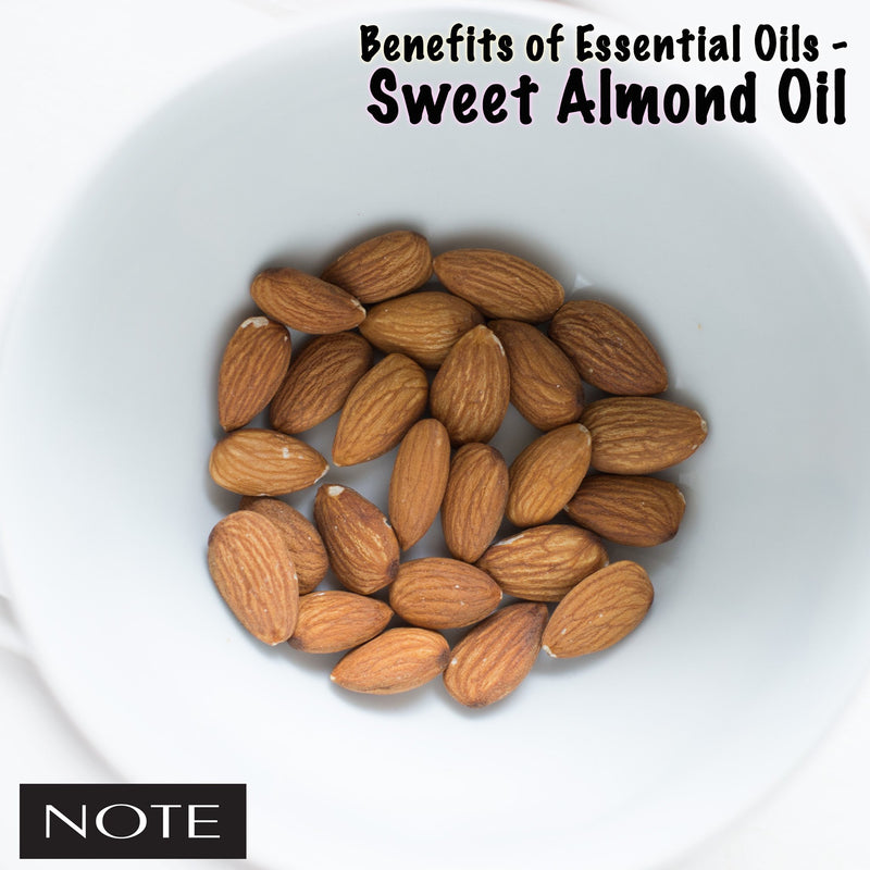Benefits of Essential Oils - Sweet Almond Oil - Note Cosmetics Singapore