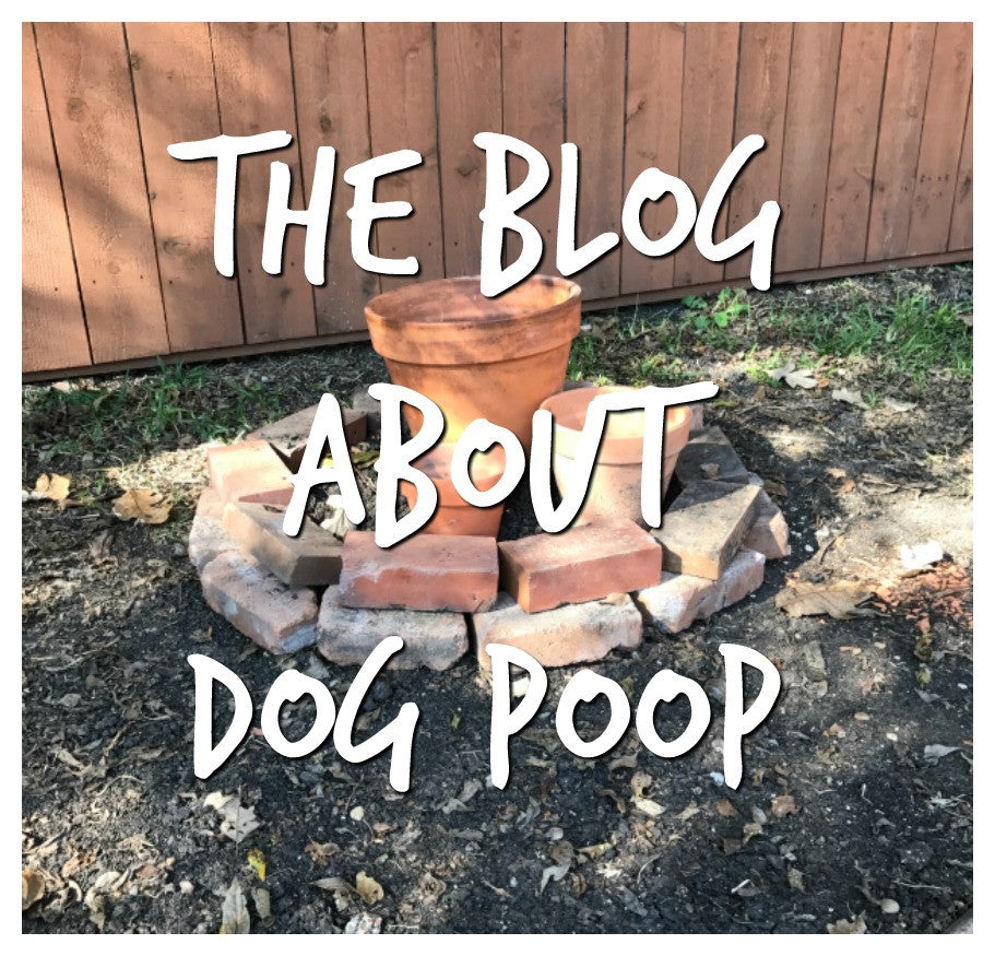 This is a blog post about dog poop...