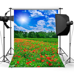 5x7ft Blue Sky Lawn Summer Outdoor Backdrop Studio Photography Photo Background