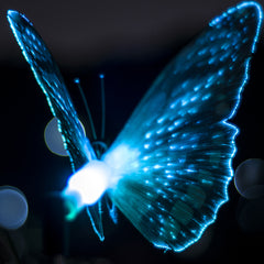 Butterfly LED Optical Fiber Solar Power Outdoor Light Lamp