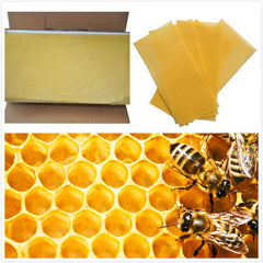 30Pcs Honeycomb Foundation Bee Hive Wax Frames Waxing Beekeeping Equipment Bee Hive Comb Honey Frames