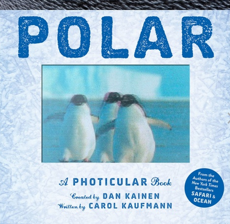 Polar Scamination Book