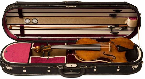 The Wojciech Topa Violin - My Honest Detailed Review