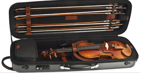 Try a violin package before you buy