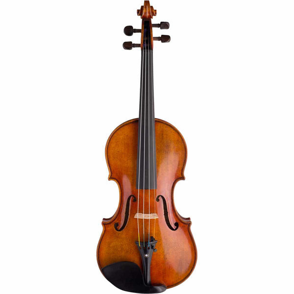 Damiano Violin Package - SAVE 40% Off Package Value