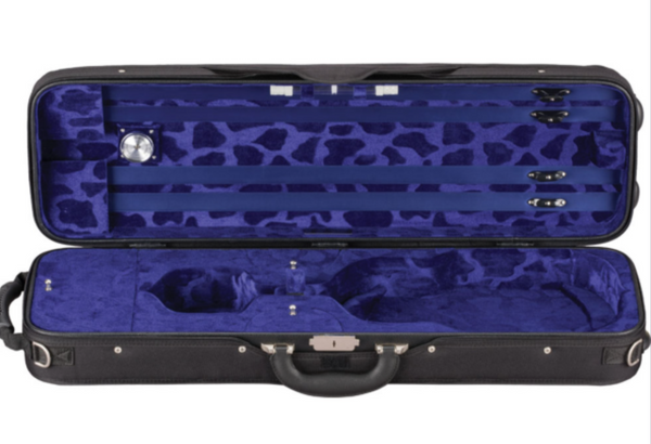 French-Style Eagle Violin Case