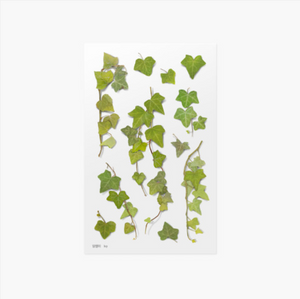 Appree Pressed Stickers- 026 Ivy