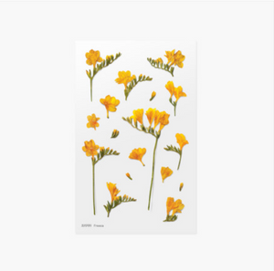Appree Pressed Stickers- 007 Freesia