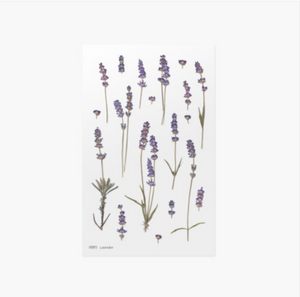 Appree Pressed Stickers- 008 Lavender