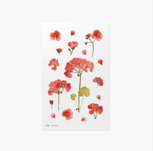 Appree Pressed Stickers- 009 Geranium