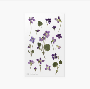 Appree Pressed Stickers- 011 Manchurian Violet