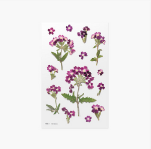 Appree Pressed Stickers- 017 Verbena
