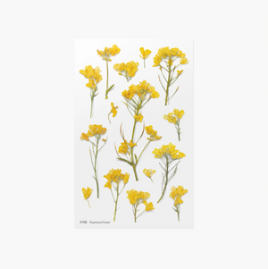 Appree Pressed Stickers- 020 Rapeseed Flower