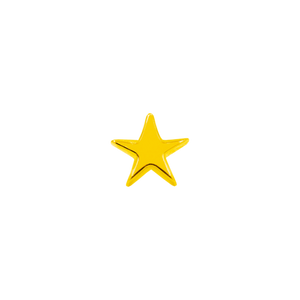 14ct Gold Star End