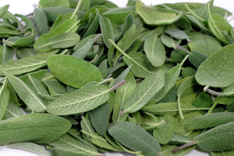 Vaping sage prevents hair loss, fights diabetes & delays aging process
