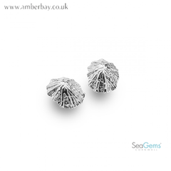 Sea Gems Sterling Silver Limpet Stud Earring