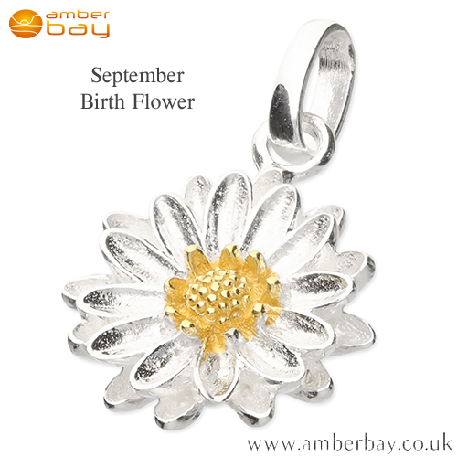 Silver and Gold Plate Aster September Birth Flower Pendant/Charm