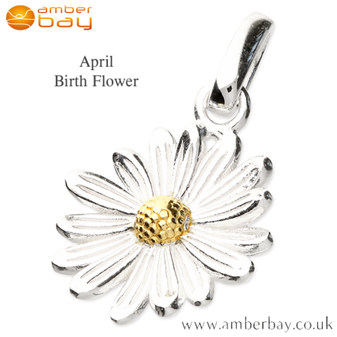 Sterling Silver and Gold Plated Daisy April Birth Flower Pendant/Charm