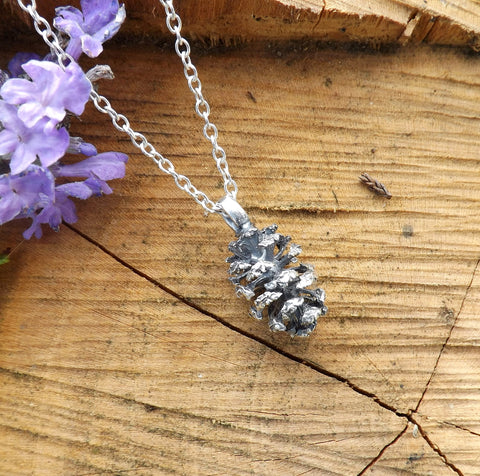 Collection: Miniature Pinecones