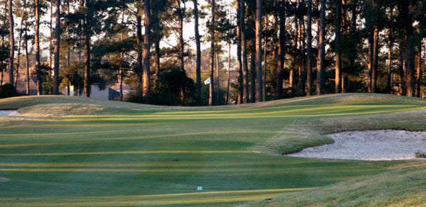 Augusta Pines Houston TX