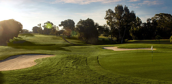 Chester Washington Golf Course Los Angeles CA