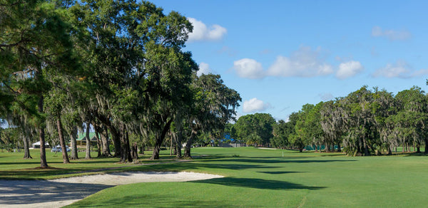 The Eagles Golf Club Tampa Florida