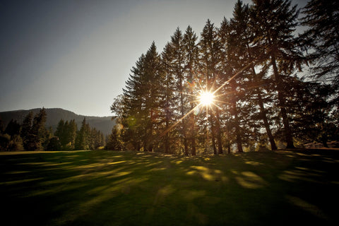 Rent golf clubs in Portland