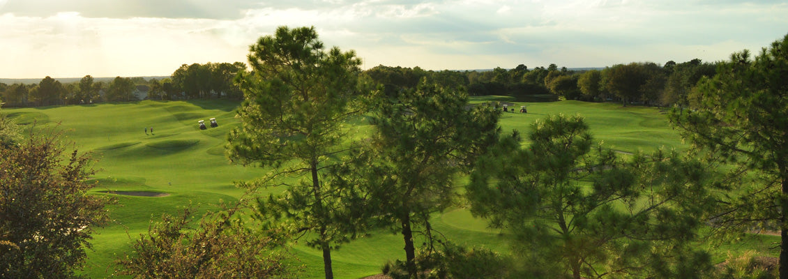Myrtle Beach Golf Club Rentals