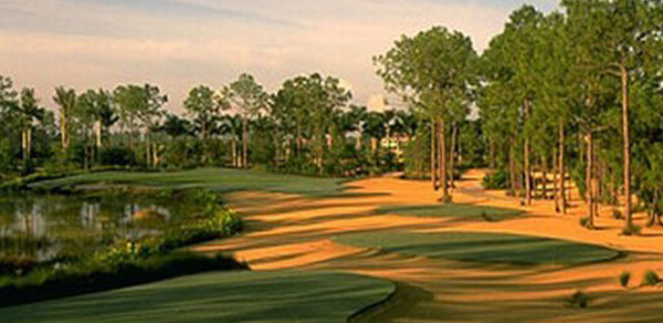 Tiburon Golf Club Ft. Myers Florida
