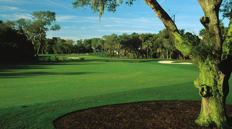 Golf club rental in Charleston