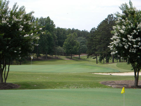 Rent golf clubs in Greenville