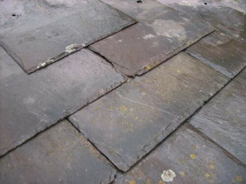Reclaimed 13 x 11 Welsh Penrhyn Heather Purple Roofing Slate (per 100)