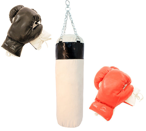 Brand New 2 Pairs of Boxing Gloves With Punching Bag